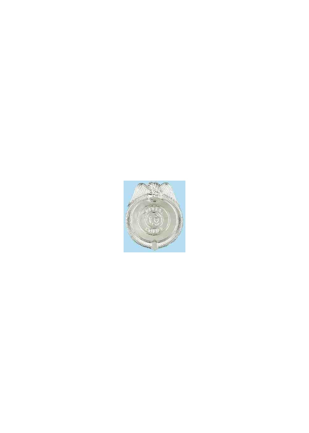 Police Boys Badge Costume Accessory
